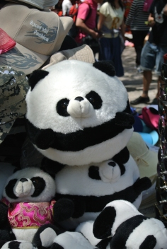 Giant panda teddies for sale at the Great Wall of China