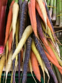 Purple carrots, Les Halles, Avignon old town
