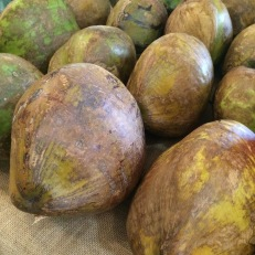 Coconuts at Neighbourgoods